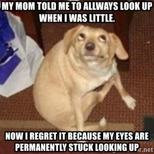 Oh You Dog - my mom told me to allways look up when i was little. now i regret it because my eyes are permanently stuck looking up