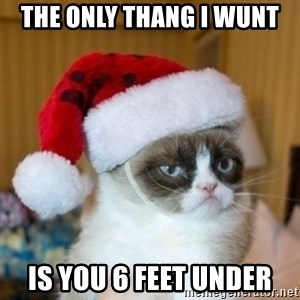 Grumpy Cat Santa Hat - the only thang i wunt  is you 6 feet under