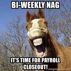 Horse - bI-wEEKLY nAG IT'S TIME FOR PAYROLL CLOSEOUT!