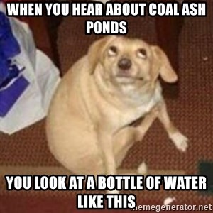 Oh You Dog - When you hear about coal ash ponds You look at a bottle of water like this