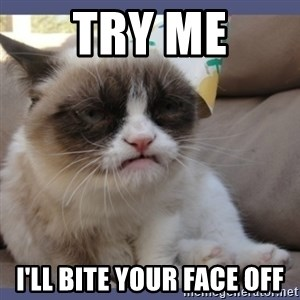 Birthday Grumpy Cat - try me i'll bite your face off