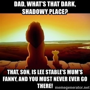 Simba - Dad, what's that dark, shadowy place? That, son, is Lee stable's mum's fanny, and you must never ever go there!