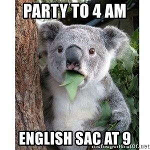surprised koala - pArty to 4 am english sac at 9