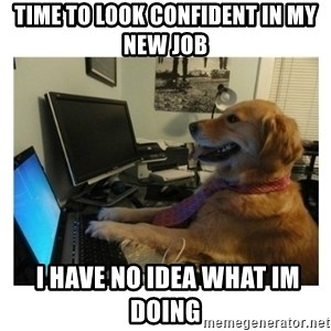 No Computer Idea Dog - TIME TO LOOK CONFIDENT IN MY NEW JOB  I HAVE NO IDEA WHAT IM DOING