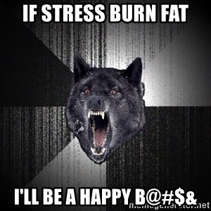 Insanity Wolf - If stress burn fat I'll be a happy B@#$&
