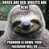 Sexual Sloth - Roses are red, violets are blue pornhub is down, your facebook will do