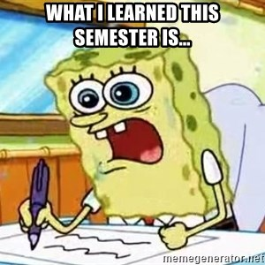 Spongebob What I Learned In Boating School Is - WHAT I LEARNED THIS SEMESTER IS...