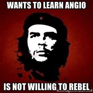 Che Guevara Meme - WANTS TO LEARN aNGIO iS NOT WILLING TO REBEL