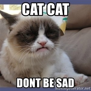 Birthday Grumpy Cat - cat cat dont be sad