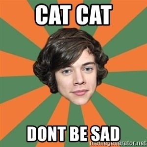 Harry 11 - cat cat dont be sad