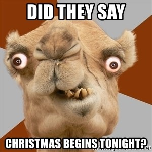 Crazy Camel lol - dID THEY SAY CHRISTMAS BEGINS TONIGHT?