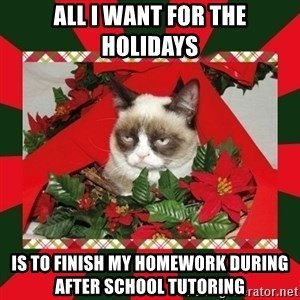 GRUMPY CAT ON CHRISTMAS - All i want for the holidays is to finish my homework during after school tutoring