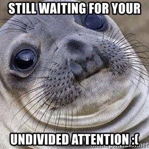 Awkward Moment Seal - still waiting for your  undivided attention :(