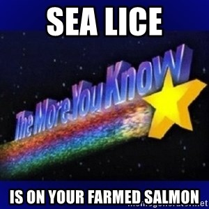 The more you know - Sea lice Is on your farmed sAlmon
