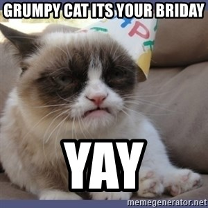 Birthday Grumpy Cat - grumpy cat its your briday yay