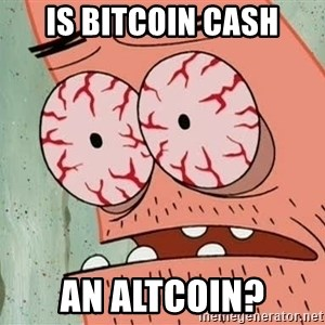 Patrick - Is bitcoin cash an altcoin?