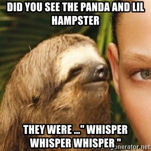 "Whispering sloth - Did you see the panda and lil hampster They were ..."" Whisper whisper whisper """