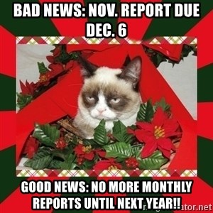 GRUMPY CAT ON CHRISTMAS - Bad news: Nov. report due Dec. 6 Good news: No more monthly reports until next year!!