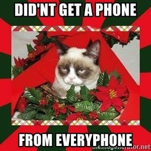 GRUMPY CAT ON CHRISTMAS - Did'nt get a phone  from everyphone
