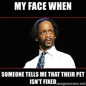 katt williams shocked - My face when someone tells me that their pet isn't fixed