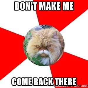 Diabetic Cat - Don't Make me Come back there