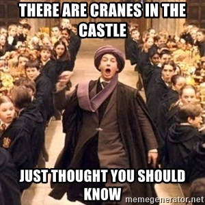 professor quirrell - There are cranes in the castle Just thought you should know