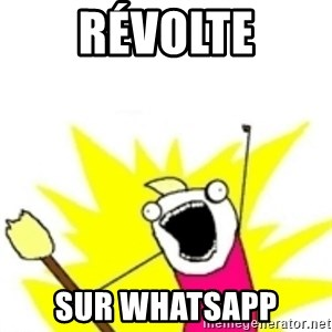 x all the y - révolte sur WhatsApp