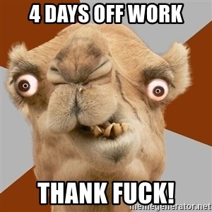Crazy Camel lol - 4 Days Off Work Thank fuck!