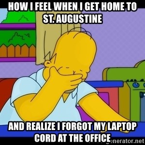 Homer Facepalm - How I feel when I get home to St. Augustine and realize I forgot my laptop cord at the office