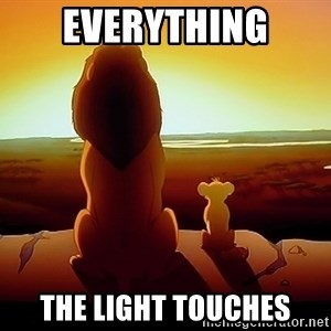 simba mufasa - Everything The light toucheS