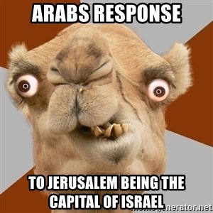 Crazy Camel lol - arabs response to Jerusalem being the capital of israel