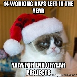 Grumpy Cat Santa Hat - 14 Working Days Left in the Year YAAy for END OF YEAR PROJECTS
