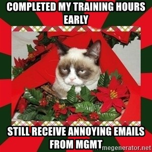 GRUMPY CAT ON CHRISTMAS - completed my training hours early still receive annoying emails from mgmt