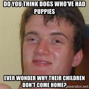 really high guy - Do you think dogs who've had puppies ever wonder why their children don't come home?