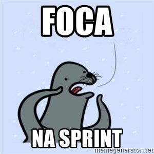 gay seal - foca na sprint