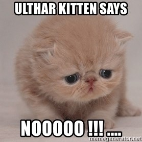 Super Sad Cat - Ulthar kitten says nooooo !!! ....