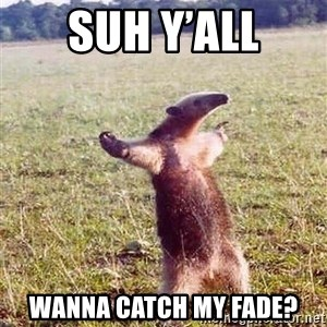 Anteater - SUh y'all Wanna catch my fade?