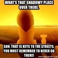 The Lion King - what's that shadowy PLACE OVER THERE. SON, THAT IS KEYS TO THE STREETS. YOU MUST REMEMBER TO NEVER GO THERE!