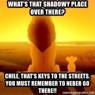 The Lion King - what's that shadowy place OVER THERE? CHILE, THAT'S KEYS TO THE STREETS. YOU MUST REMEMBER TO NEBER GO THERE!!