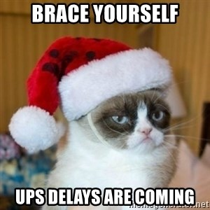 Grumpy Cat Santa Hat - brace yourself ups delays are coming