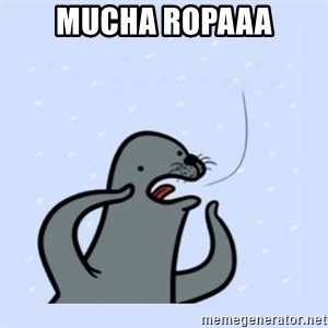 gay seal - Mucha ropaaa