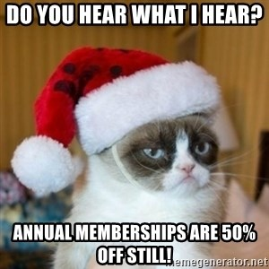 Grumpy Cat Santa Hat - do you hear what i hear?  Annual memberships are 50% off still!