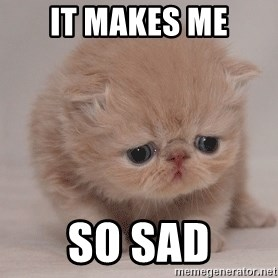 Super Sad Cat - It makes me So sad