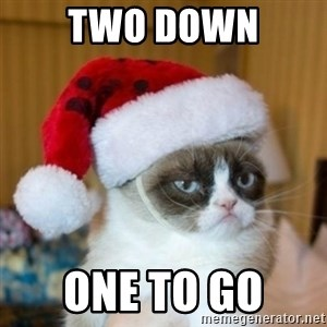 Grumpy Cat Santa Hat - TWO DOWN ONE TO GO