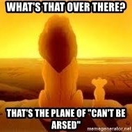 """The Lion King - What's that over there? That's the plane of """"Can't Be Arsed"""""""