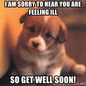 cute puppy - I am sorry to hear you are feeling ill So get well soon!