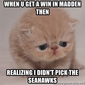 Super Sad Cat - When u get a win in madden then  Realizing I didn't pick the seahawks