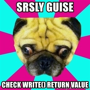 Perplexed Pug - srsly guise check write() return value