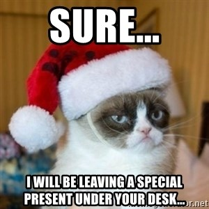 Grumpy Cat Santa Hat - Sure... I will be leaving a special present under your desk...