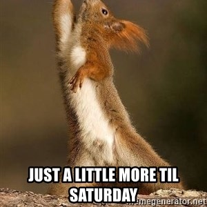 dramatic squirrel - Just a little more til Saturday